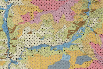 Portion of vegetation map